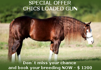 Chics Loaded Gun Special Offer