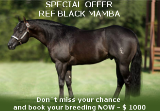 REF Black Mamba Special Offer